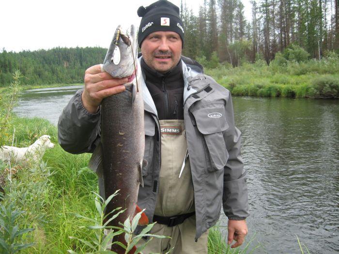 енисей толк рыбалка
